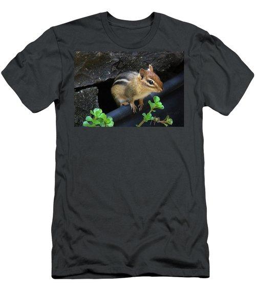 Little Chipmunk  Men's T-Shirt (Athletic Fit)