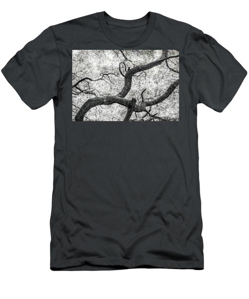 Live Oak Abstract 1 Men's T-Shirt (Athletic Fit)