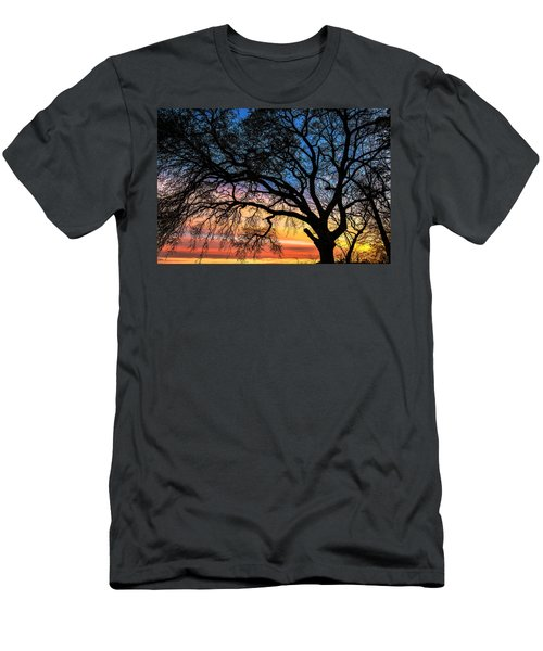 Live Oak Under A Rainbow Sky Men's T-Shirt (Athletic Fit)
