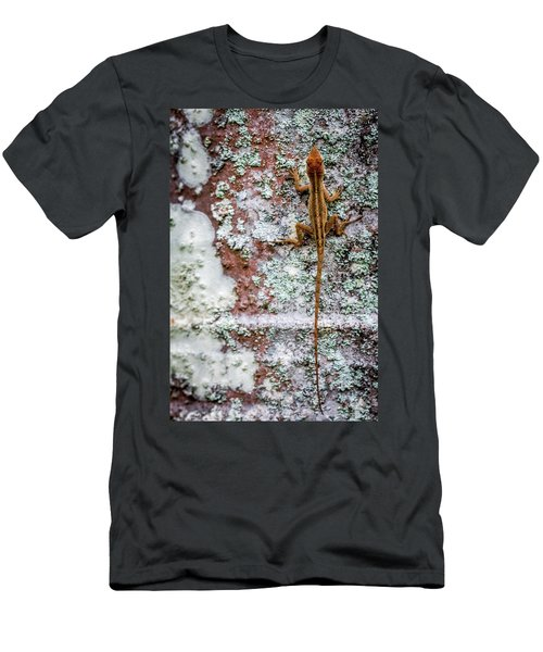 Lizard And Lichen On Brick Men's T-Shirt (Athletic Fit)