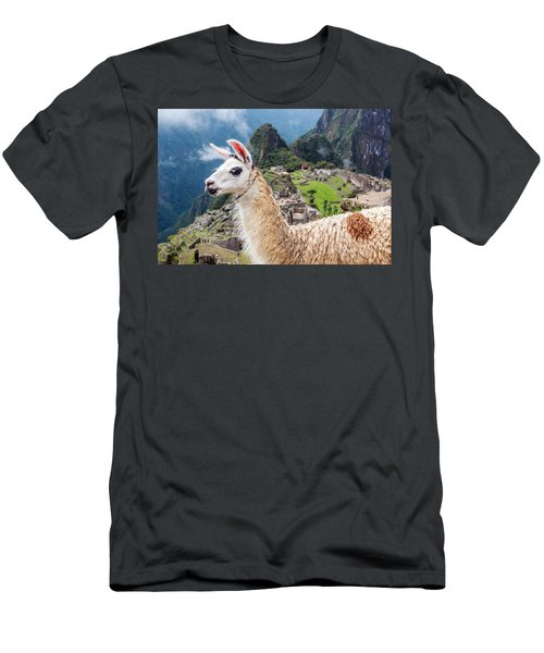 Llama At Machu Picchu Men's T-Shirt (Slim Fit) by Jess Kraft