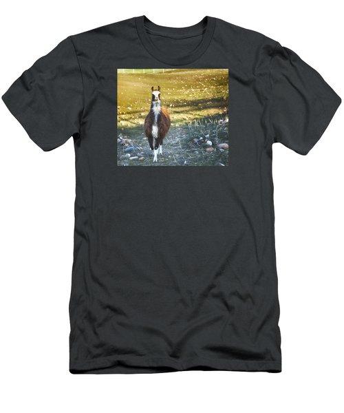 Men's T-Shirt (Slim Fit) featuring the photograph Llama Cuteness by Theresa Tahara