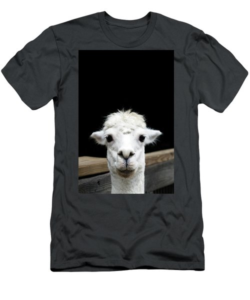 Llama Men's T-Shirt (Slim Fit) by Lauren Mancke