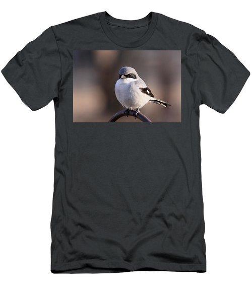 Loggerhead Shrike - Smokey Men's T-Shirt (Athletic Fit)