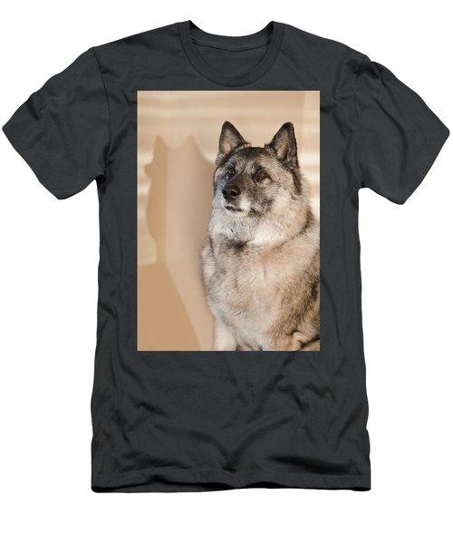 Loki Sepia Men's T-Shirt (Athletic Fit)