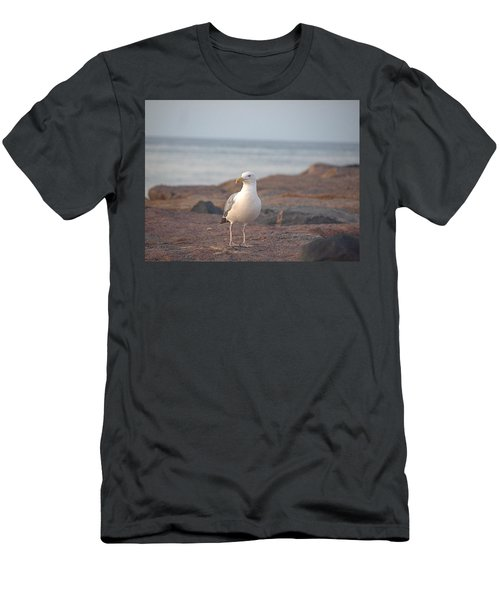 Men's T-Shirt (Slim Fit) featuring the photograph Lone Gull by  Newwwman