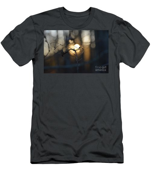 Lonely Tree Branch With Bokeh Love -georgia Men's T-Shirt (Athletic Fit)