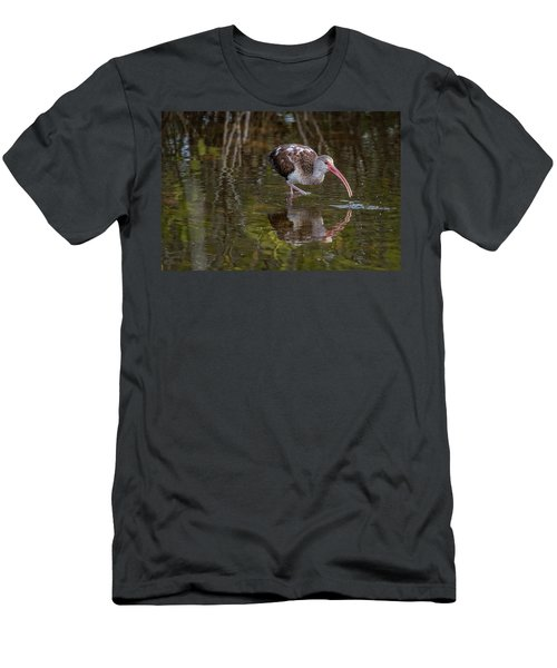 Long-billed Curlew - Male Men's T-Shirt (Athletic Fit)