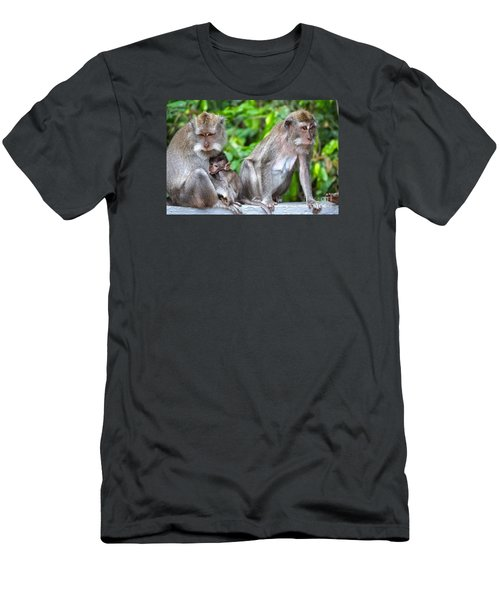 Long Tailed Macaques Men's T-Shirt (Slim Fit) by Cassandra Buckley