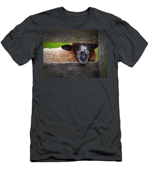 Lookin At Ewe Men's T-Shirt (Slim Fit)