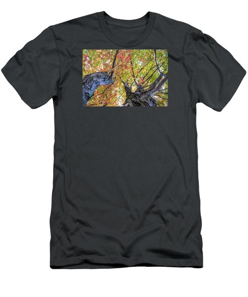 Looking Up - 9670 Men's T-Shirt (Slim Fit) by G L Sarti