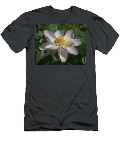 Lotus Flower In Bloom Men's T-Shirt (Athletic Fit)