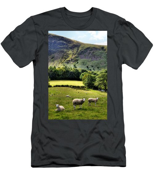 Lucky Sheep Men's T-Shirt (Athletic Fit)