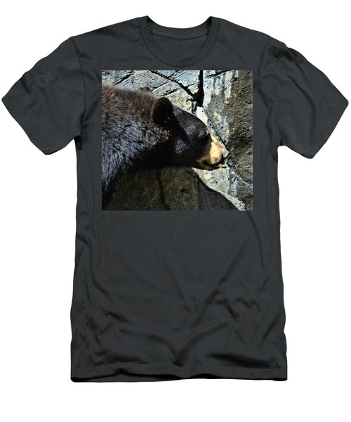 Lumbering Bear Men's T-Shirt (Athletic Fit)