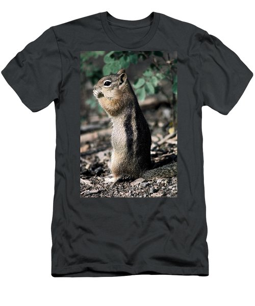 Men's T-Shirt (Slim Fit) featuring the photograph Lunchtime For Ground Squirrel by Sally Weigand