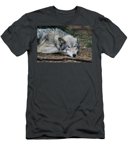Men's T-Shirt (Slim Fit) featuring the photograph Lying In Wait by Laddie Halupa