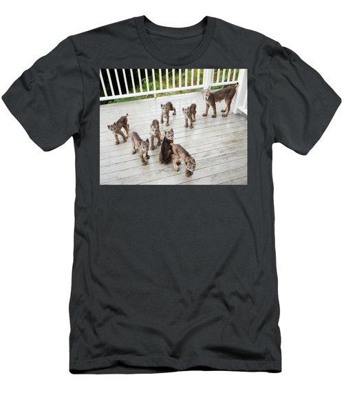 Lynx Family Portrait 11x14 Men's T-Shirt (Athletic Fit)