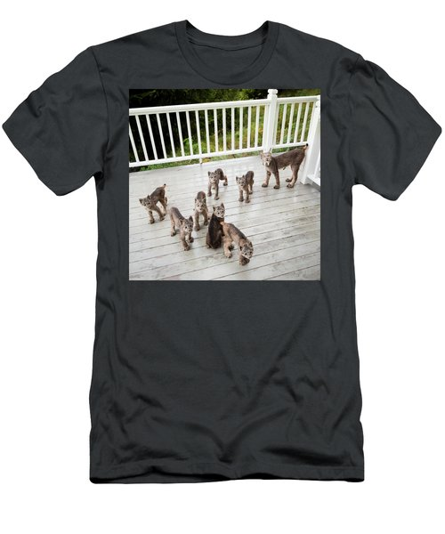 Lynx Family Portrait Men's T-Shirt (Athletic Fit)