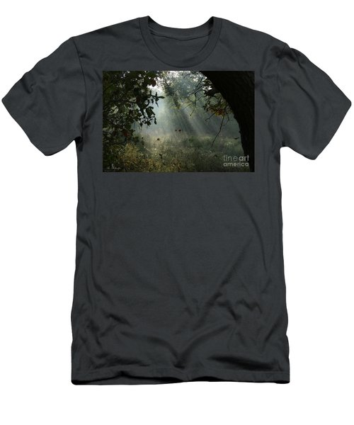 Magical Woodland Lighting Men's T-Shirt (Athletic Fit)