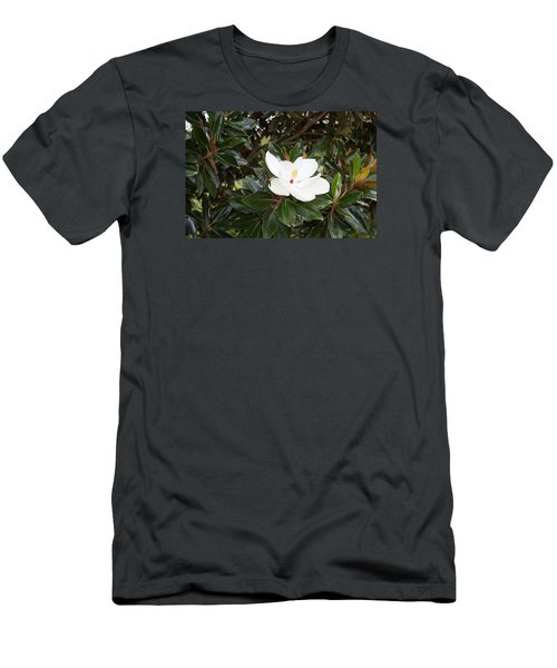 Magnolia Blossom Men's T-Shirt (Slim Fit) by Linda Geiger