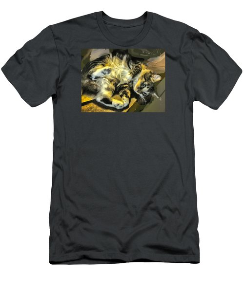 Maine Coon Cat At Play Men's T-Shirt (Slim Fit) by Constantine Gregory