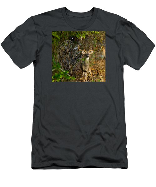 Majestic Whitetail Men's T-Shirt (Athletic Fit)