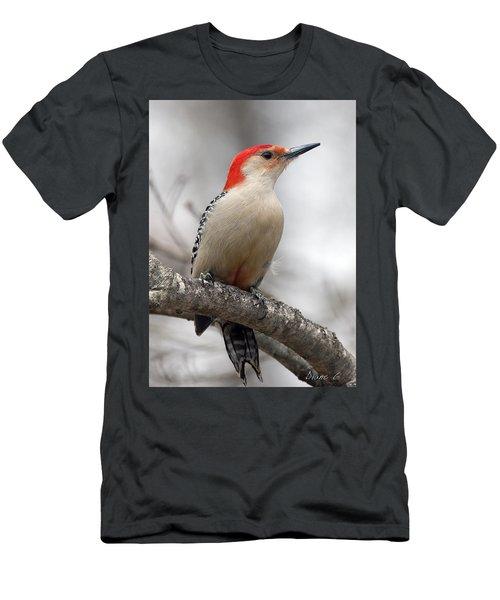 Male Red-bellied Woodpecker Men's T-Shirt (Slim Fit) by Diane Giurco