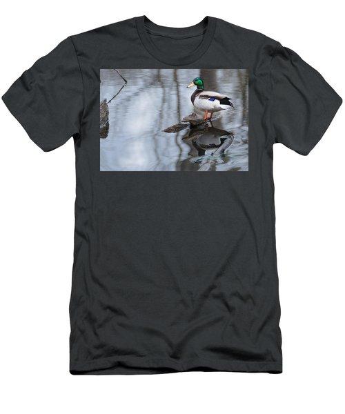 Mallard Drake Men's T-Shirt (Slim Fit) by Edward Peterson