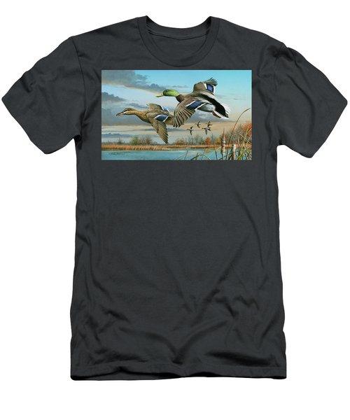 Mallards In Flight Men's T-Shirt (Athletic Fit)