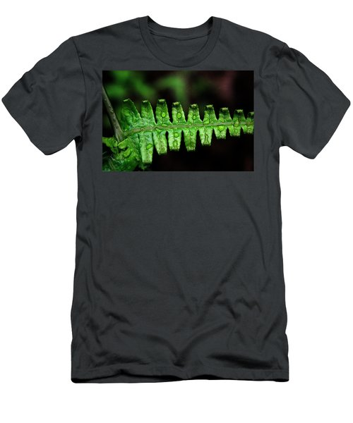 Manoa Fern Men's T-Shirt (Athletic Fit)