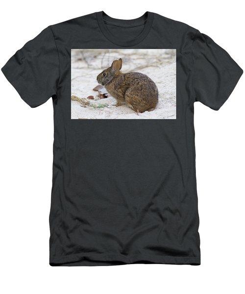 Marsh Rabbit On Dune Men's T-Shirt (Athletic Fit)