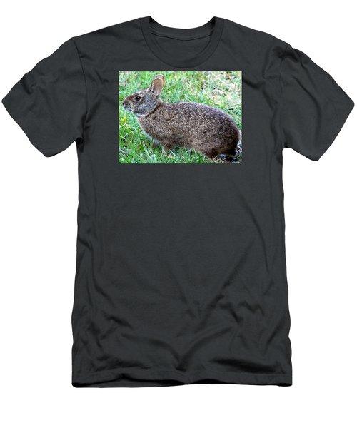 Marsh Rabbit Run Rabbit  Men's T-Shirt (Slim Fit) by Chris Mercer