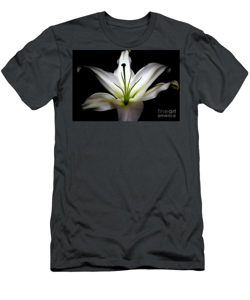 Masculinity Men's T-Shirt (Slim Fit) by Diana Mary Sharpton