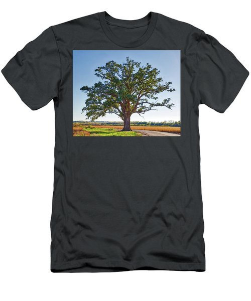 Mcbaine Bur Oak Men's T-Shirt (Athletic Fit)
