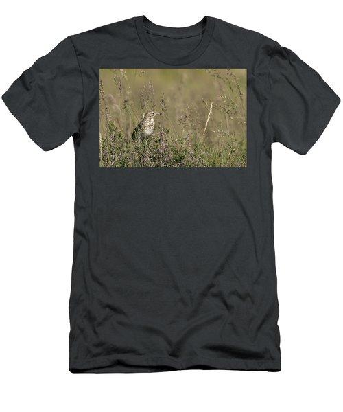 Meadow Pipit Men's T-Shirt (Athletic Fit)