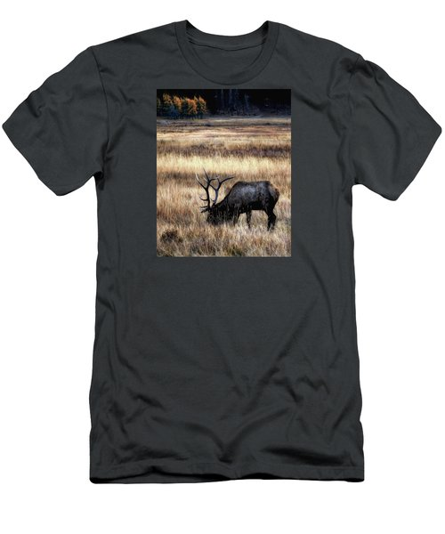 Meadows Of Horseshoe Park  Men's T-Shirt (Athletic Fit)