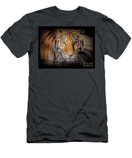 Meet My Gaze Men's T-Shirt (Athletic Fit)