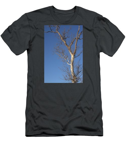 Mighty Tree Men's T-Shirt (Athletic Fit)