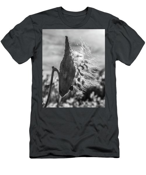 Milkweed Pod Back Lit B And W Men's T-Shirt (Athletic Fit)