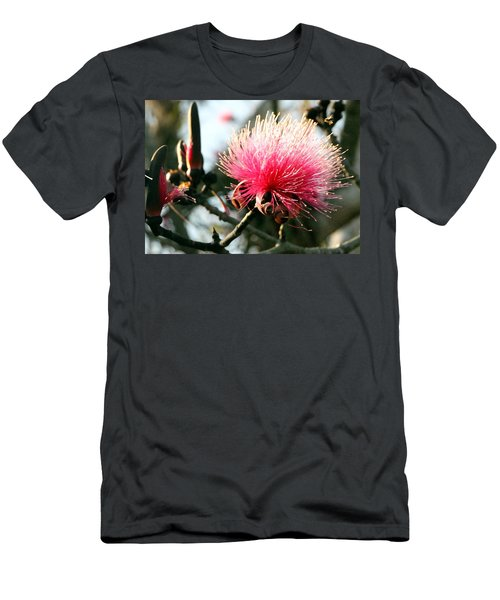 Mimosa In Bloom Men's T-Shirt (Athletic Fit)