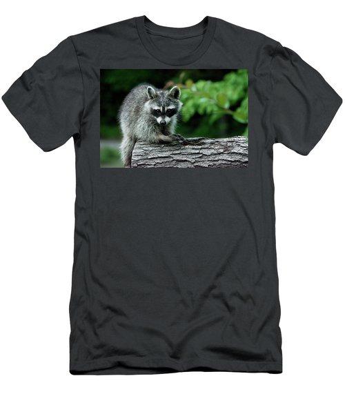 Mischievous Men's T-Shirt (Slim Fit) by Linda Segerson