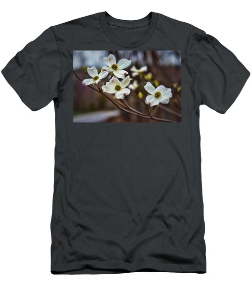 Missouri Dogwoods Men's T-Shirt (Athletic Fit)