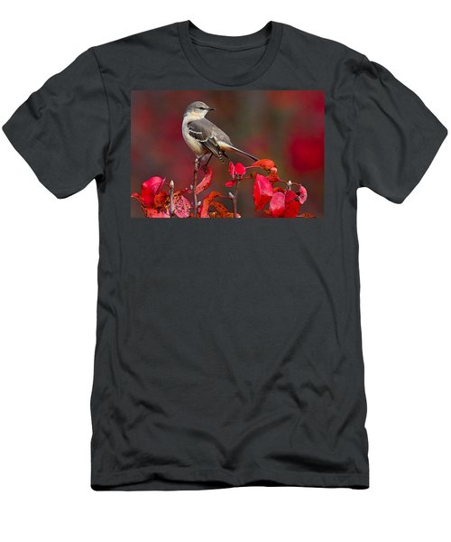 Mockingbird On Red Men's T-Shirt (Athletic Fit)