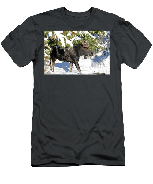 Moose In Snow Men's T-Shirt (Athletic Fit)