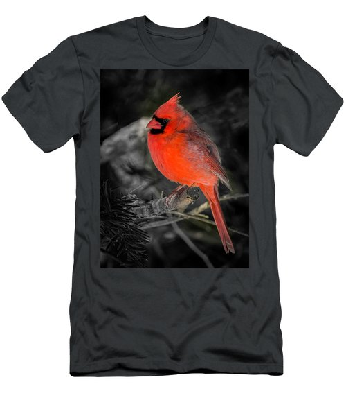 Morning Cardinal C Men's T-Shirt (Athletic Fit)