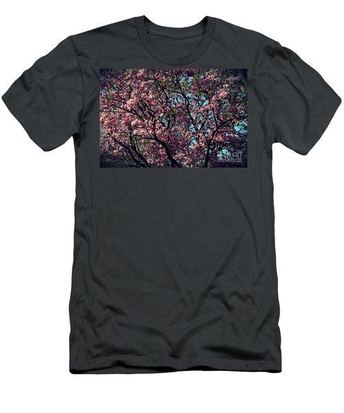 Morning Lit Magnolia Men's T-Shirt (Athletic Fit)