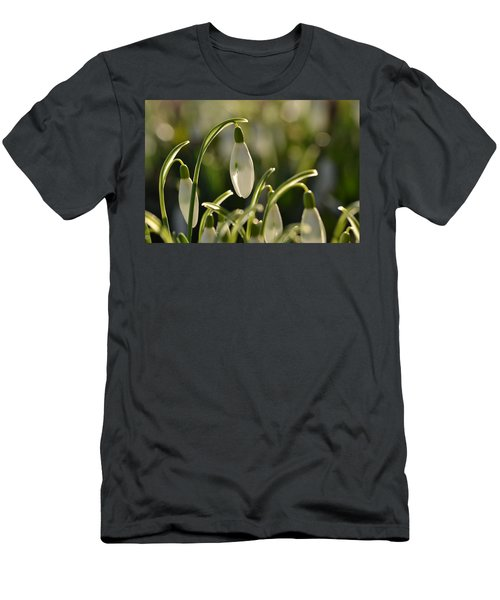 Morning Snowdrops Men's T-Shirt (Athletic Fit)