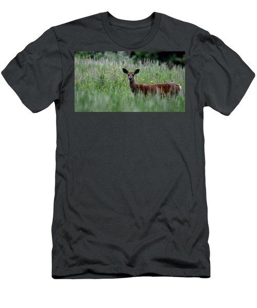 Morninng Deer Men's T-Shirt (Athletic Fit)