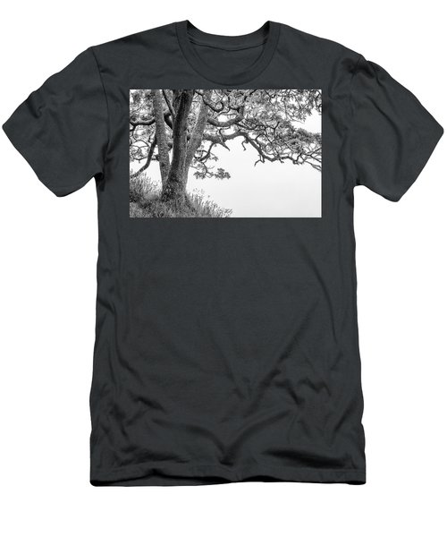 Mossy Tree Men's T-Shirt (Athletic Fit)