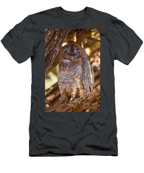 Mottled Wood Owl, India Men's T-Shirt (Athletic Fit)